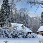 Eglaines_ziema_winter